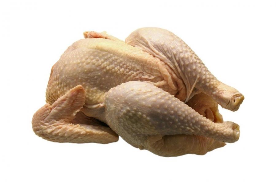 chicken-1140_960_720.jpg